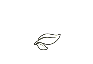 bram-roovers